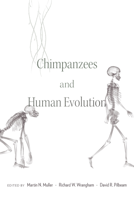 Cover: Chimpanzees and Human Evolution, from Harvard University Press