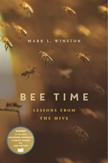 Cover: Bee Time in PAPERBACK