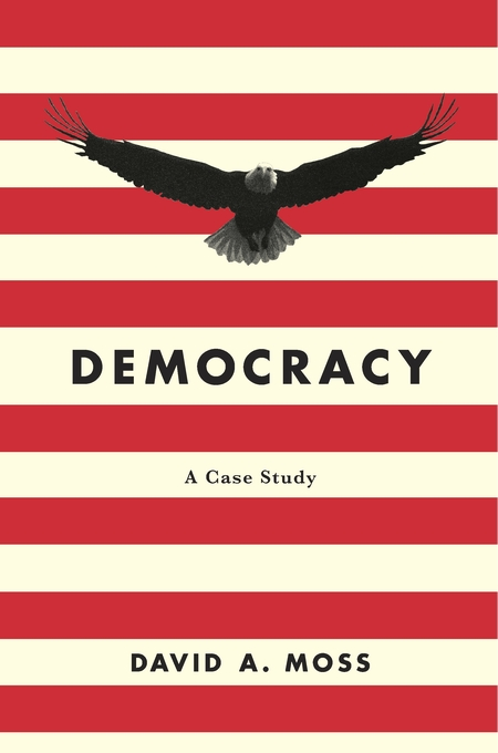 Cover: Democracy: A Case Study, from Harvard University Press