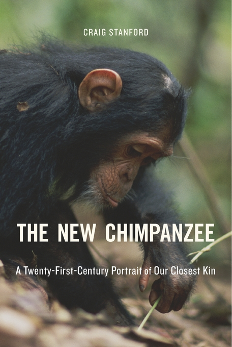 Cover: The New Chimpanzee: A Twenty-First-Century Portrait of Our Closest Kin, from Harvard University Press