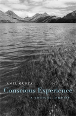 Cover: Conscious Experience: A Logical Inquiry
