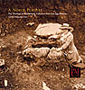 Cover: A Noble Pursuit: The Duchess of Mecklenburg Collection from Iron Age Slovenia